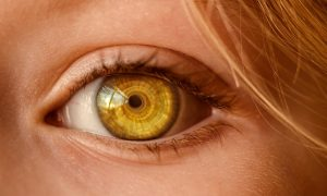 Do Eyeballs Change Shape with Age: Eye Myth Exposed