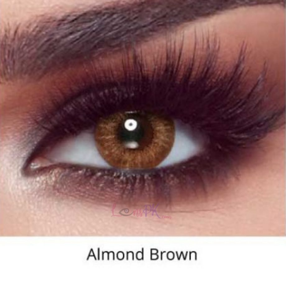 Bella Almnd Brown - Oneday Collection